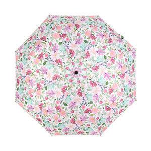 Albi Dáždnik - Hortenzie