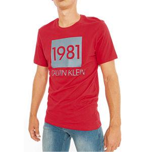 Calvin Klein Pánske tričko S / S Crew Neck NM1708E-1XY